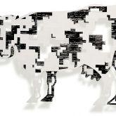 """David Gerstein """"Cow – Digital """""""