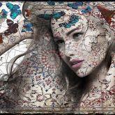 """Hans Jochem Bakker """"Butterfly II"""""""