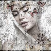 "Hans Jochem Bakker ""See the Butterfly"""