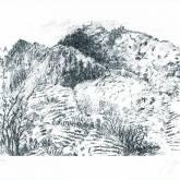 """Günter Grass """"Italienische Landschaft"""""""