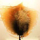"""Otto Piene """"Unknown Tree"""""""